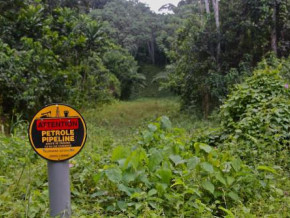 au-31-octobre-2020-le-cameroun-a-percu-30-7-milliards-de-fcfa-de-droits-sur-le-pipeline-partage-avec-le-tchad-2-5