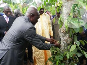 le-programme-agropoles-destine-a-la-promotion-des-agro-industries-au-cameroun-en-sous-financement-chronique