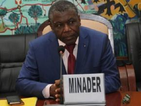 grace-a-sa-strategie-de-developpement-de-la-filiere-le-cameroun-table-sur-une-production-de-50-000-tonnes-d-anacardes-en-2025