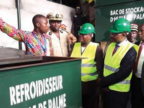 le-cameroun-recrute-un-consultant-pour-installer-des-usines-de-transformation-de-noix-de-palme-plantain-et-ananas