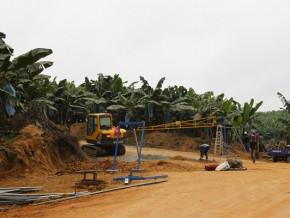 bananes-la-baisse-de-regime-a-la-php-fait-chuter-les-exportations-camerounaises-de-484-tonnes-en-juin-2021